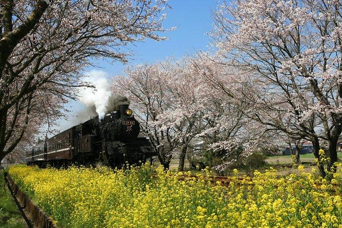 Steam Locomotive, Diesel Engine, Shinkansen & The Railway Museum from Tokyo