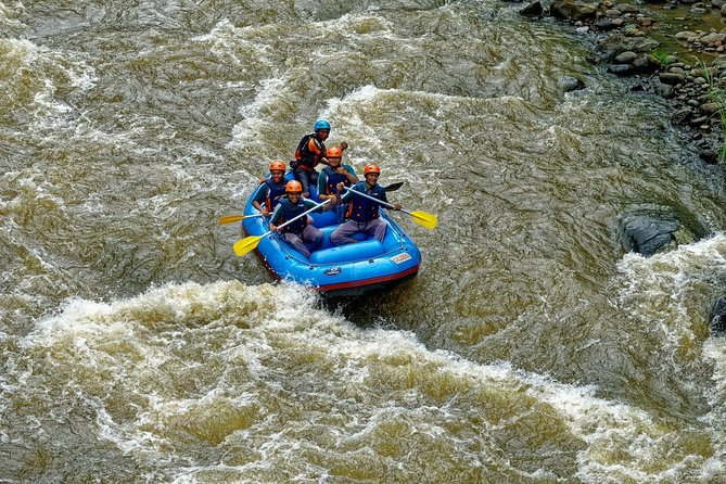 River Rafting Down the Ayung and Sacred Monkey Forest
