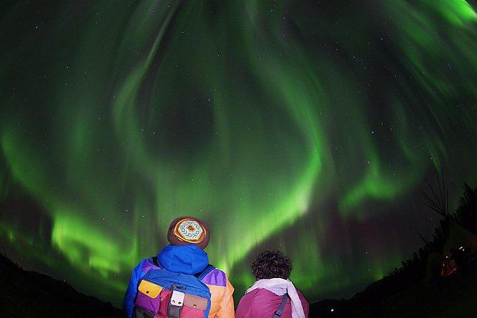 Arctic Day: Aurora Viewing Tour | evening