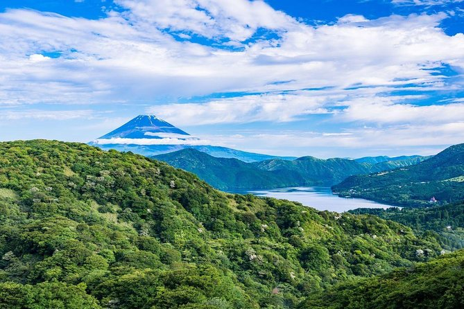 10-hour Mt.Fuji & Hakone tour with Private Car to/from Tokyo