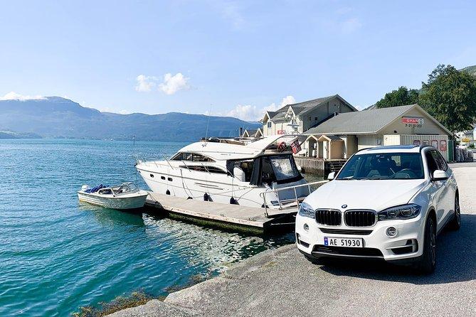 Bergen - Folgefonna Glacier private cruise