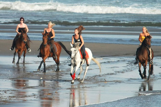 Bali Horse Riding 30 Minutes At Black Sand Beach-Ubud Market In A Private Tour!