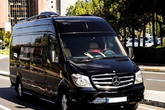 Antalya Airport (AYT) to Kargicak Transfer - Private Minibus