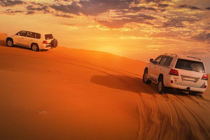 Premium Red Dunes & Camel Safari with BBQ Dinner & Live Show's