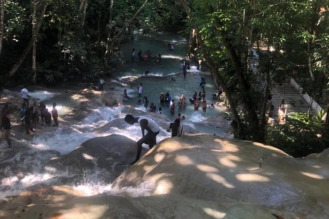 Mystic Mountain and Dunn's River Falls Private Adventure Tour from Montego Bay