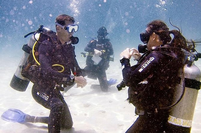 ACUC Open Water Course (6 dives)