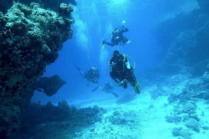 Fun Dives x2 dives/day (for Certified Divers)