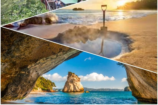 Coromandal Hot Water Beach & Cathedral Cove Day Tour From Auckland