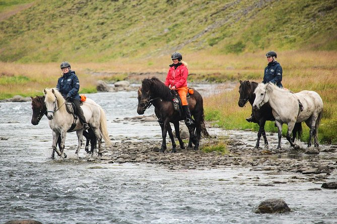 Horse Riding Holiday Along Forgotten Trails in North Iceland - 4 Days
