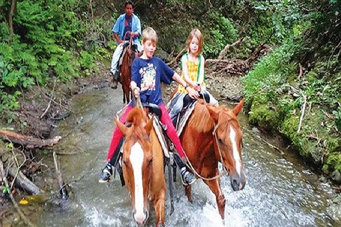Double Activity Limo Tour: Xunantunich Ruins & Jungle Horseback Adventure