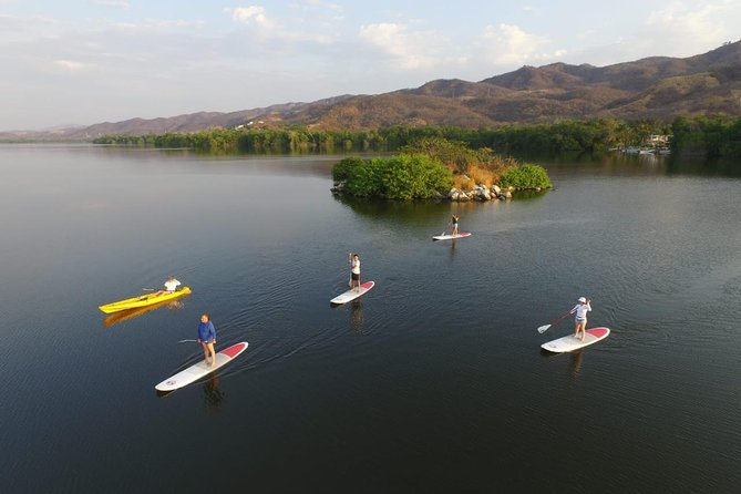 Experience The Fluorescent Lagoon In Paddle Board Or Kayak Birdwatching And More