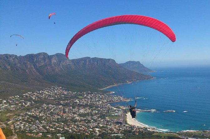 Cape Town 3-Day Attraction Tours: Paragliding, Cape Peninsula & Wine Tasting