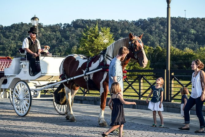 Private Chattanooga Horse & Carriage Tour