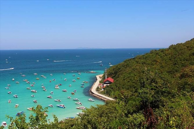 Koh Larn Trip from Pattaya including Seafood Lunch photo 4