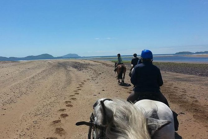 Killarney National Park Horseback Ride. Co Kerry. Guided. 3 hours. photo 3