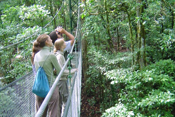 Full Day Monteverde Cloud Forest Tour from San Jose photo 3