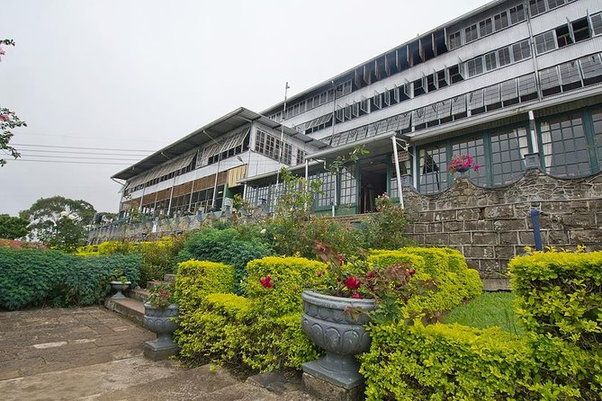 Lipton's Seat and Dambatenna Tea Factory,Trail Amidst Tea Plantation Day Tour photo 2