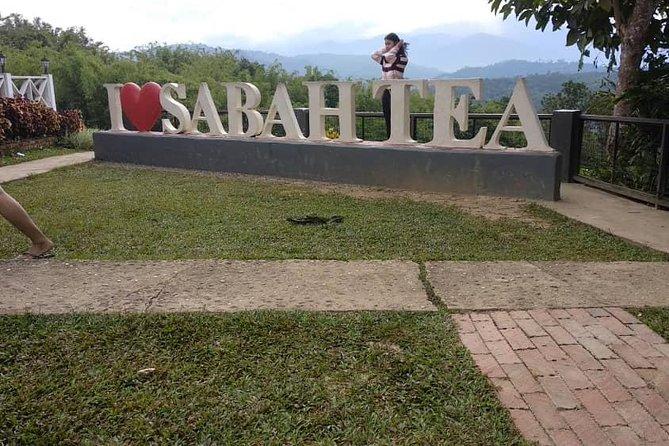 Kota Kinabalu Kinabalu Park Day Tour Private