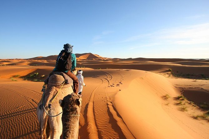 3 Day Desert Tour Marrakech to Fes