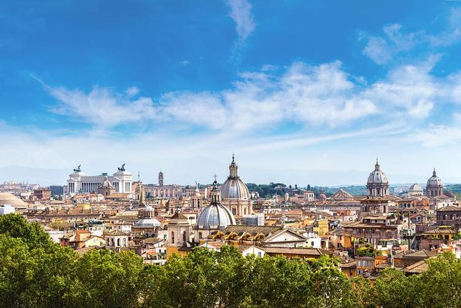 Rome: Private Tour with Driver