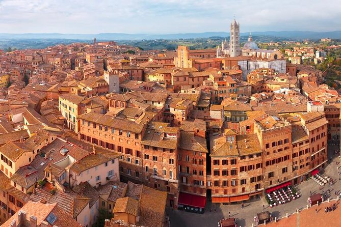 Wine Tasting in Tuscany: full-day private tour from Rome
