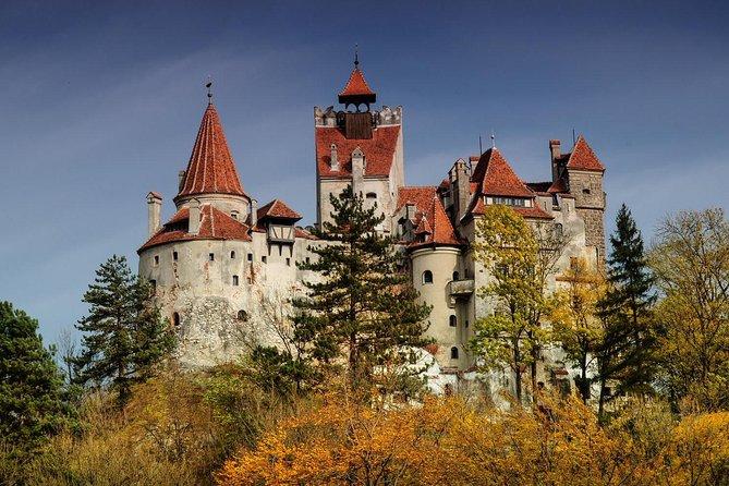 Bran Castle, Rasnov Fortress and Palinca Distillery Day Trip From Brasov