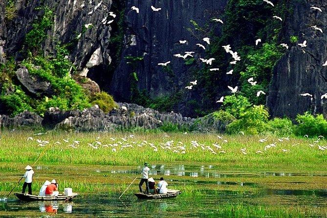 Superb Day Tour:Hoa Lu-Tam Coc-Mua Cave-Trang An.. Biking & Boat Trip from Hanoi