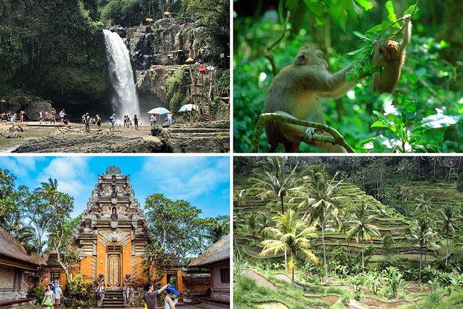 Bali Car Charter - Ubud Full Day Trip