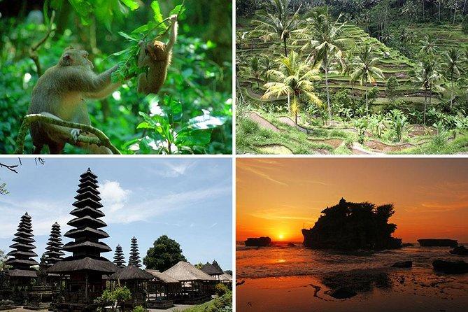Bali Car Charter - Ubud and Tanah Lot Temple Trip