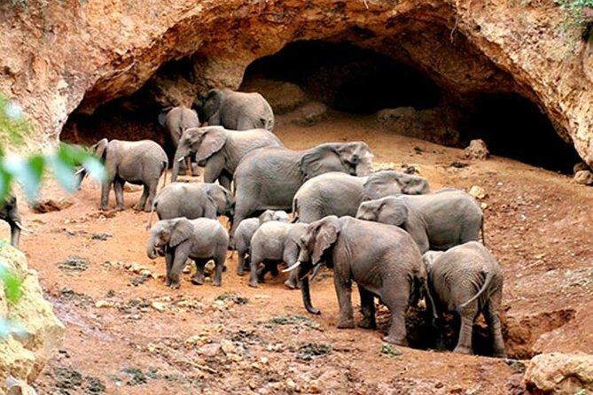 2 Days Safari to Tarangire National Park and Ngorongoro Crater