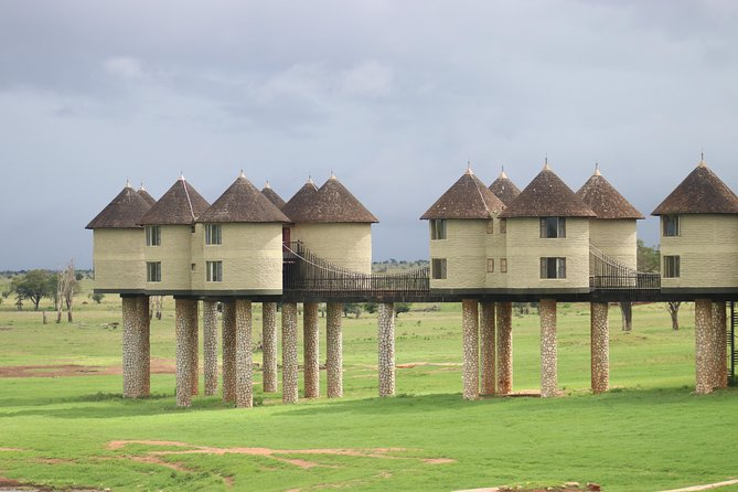 7 Days 6 Nights Ngutuni/saltlick/ziwani Sanctuary/amboseli/tsavo Safari
