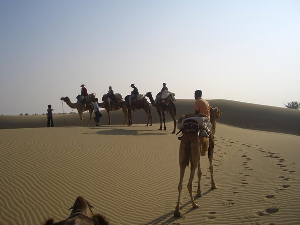 Over Night Desert Adventure camel safari