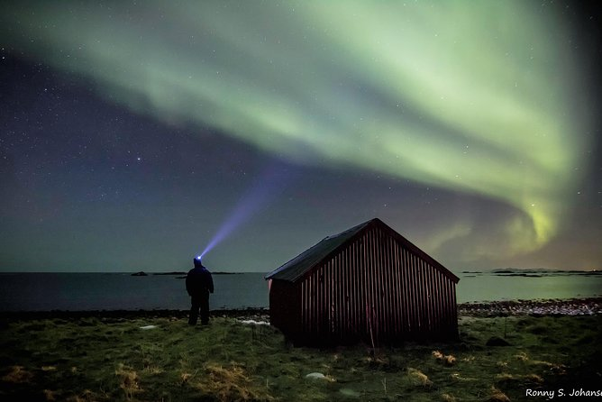 Magical Photo Tours in Lofoten