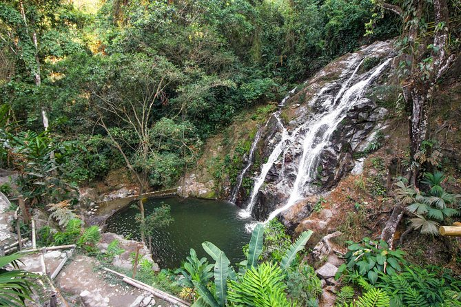 Minca Day-Trip from Santa Marta Including Colombian Lunch and Coffee Farm Visit