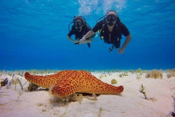 PADI Discover Scuba Diving, In Costa Maya, Mahahual, México.