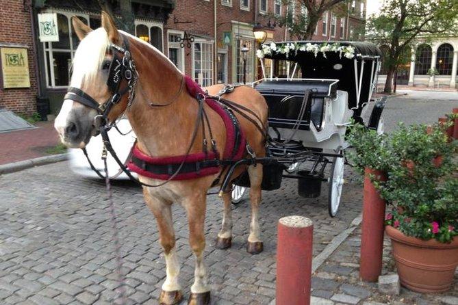 Passeio de carruagem puxada a cavalo de Filadélfia