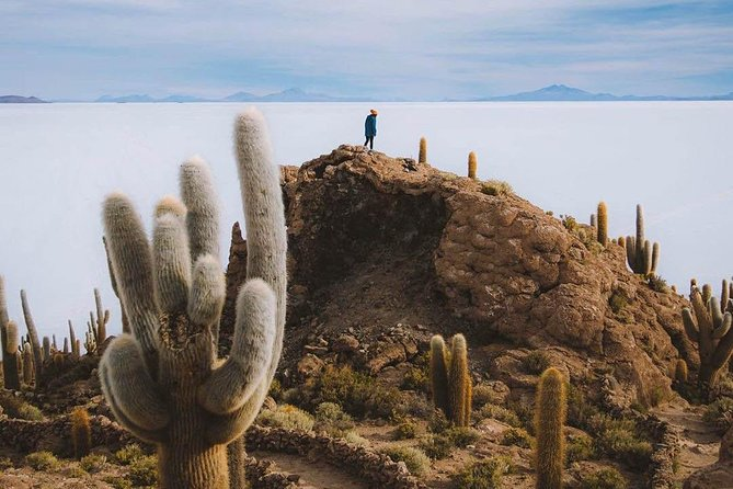 Uyuni Salt Flats day tour (Private or 4 Small Group) photo 1