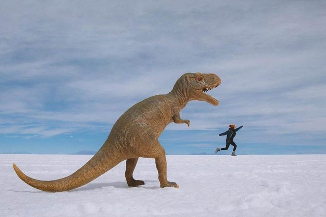 Uyuni Salt Flats day tour (Private or 4 Small Group) photo 7