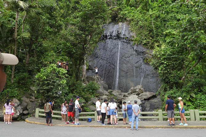 El Yunque National Forest Tour | with Transportation from San Juan