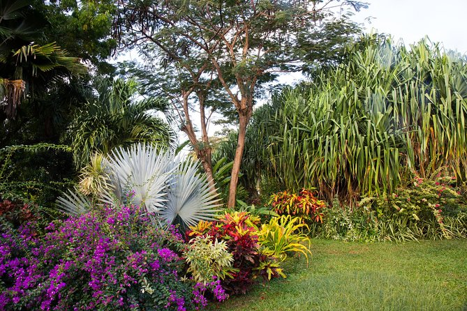 Grenada 3 Spice Gardens Tour photo 2