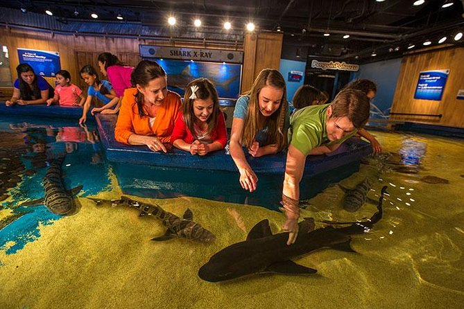 Newport Aquarium Admission With Free $10 Gift Shop Credit Included photo 7