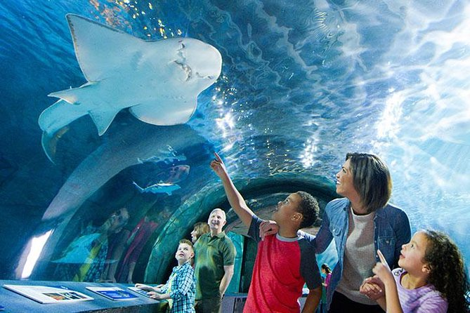 Newport Aquarium Admission With Free $10 Gift Shop Credit Included photo 2