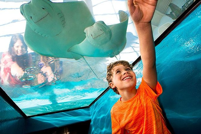 Newport Aquarium Admission With Free $10 Gift Shop Credit Included photo 3