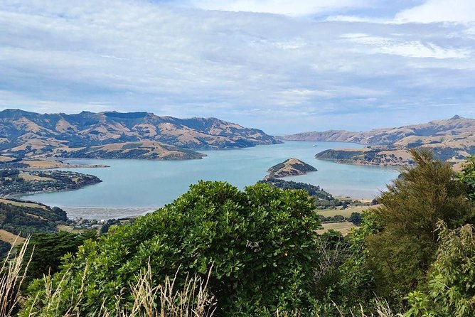 26-day Motorcycle Tour of New Zealand's South & North Islands photo 10