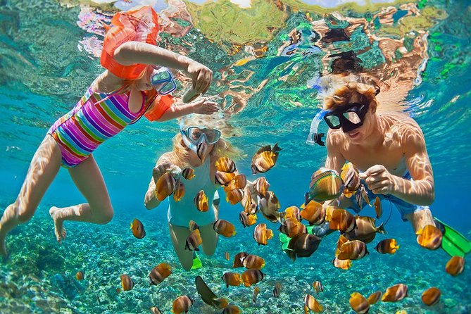 Oahu Circle Island and Snorkeling Tour