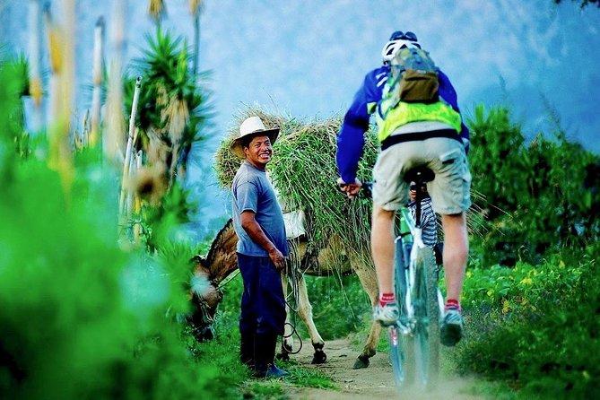Sip n' Cycle Coffee and Mountain Bike Tour