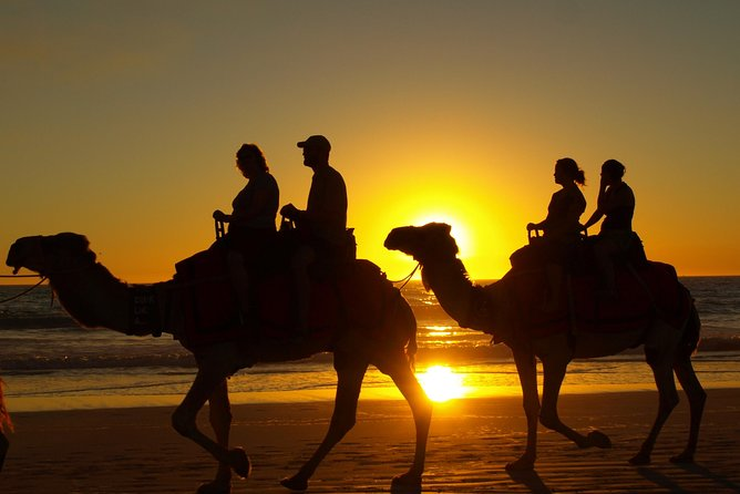 Sunset Camel Ride by the banana beach