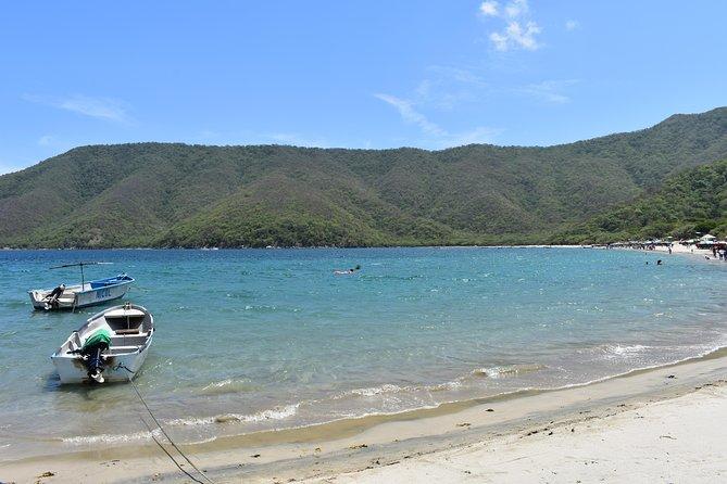 Private Day Trip to Bahia Concha beach