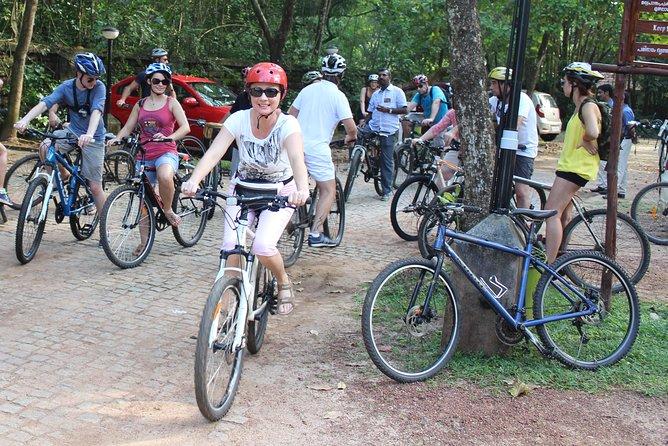Kochi City Bike Tour