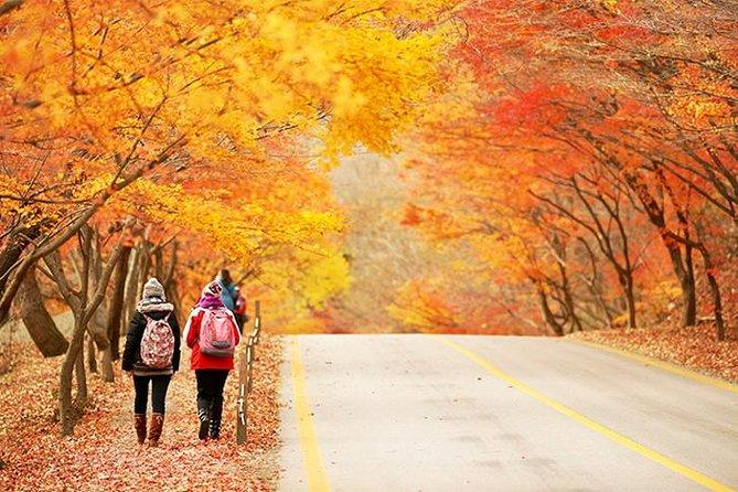Autumn 10 days Jeonju&Mt.Naejangsan&Mt.Seorak&Mungyeong&Jeju&Busan on Early Nov